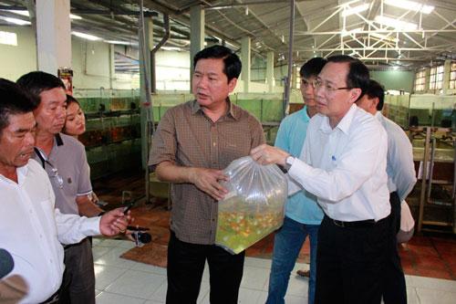 Bí thư Đinh La Thăng thăm Công ty CP Sài Gòn Cá Kiểng trong chuyến làm việc tại huyện Củ Chi sáng 21-5 Ảnh: Quốc Chiến