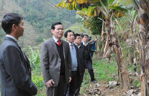 Bí thư Tỉnh ủy Hà Giang Triệu Tài Vinh (thứ hai từ trái sang). Ảnh: PHI ANH
