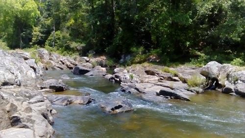 Vị trí dự định đặt đập thủy điện trong Khu Bảo tồn thiên nhiên Kon Chư Răng (Ảnh do Khu Bảo tồn thiên nhiên cung cấp)