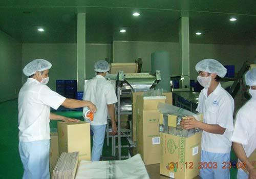 Doanh nghiệp điều xuất khẩu ngày càng lớn mạnh