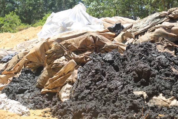 Chất thải chôn lấp trái phép tại trang trại ông Lê Quang Hòa - Ảnh: Dũng Sinh