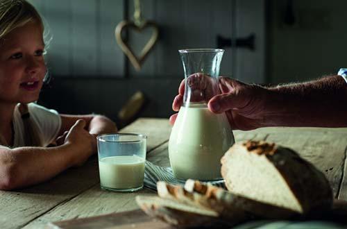 Sữa là thực phẩm chứa cả 4 dưỡng chất giúp giải phóng năng lượng hiệu quả gồm canxi, phốt pho, vitamin B2 và B12