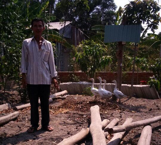 Ông Nguyễn Văn Bỉ cất chòi vịt cũng bị khởi tố