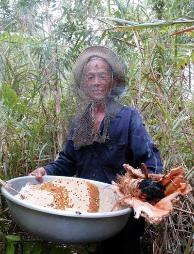 Mật ong U Minh Hạ luôn bảo đảm uy tín, chất lượng