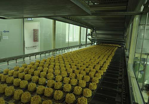 Quy trình sản xuất mì ăn liền công nghiệp hiện đại hầu như đều tự động và khép kín
