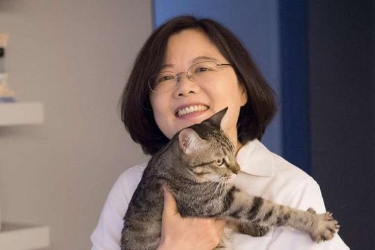 Bà Thái Anh Văn và mèo cưng. Ảnh: Facebook