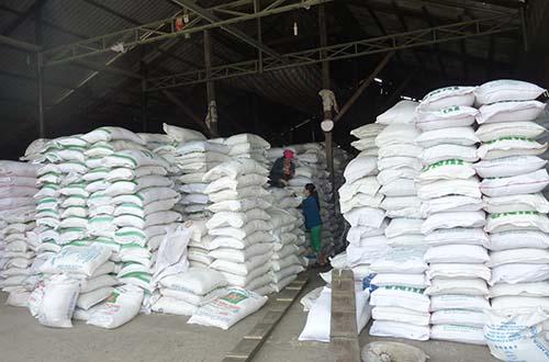 Giá lúa gạo khó có khả năng tăng cao trong thời gian tới