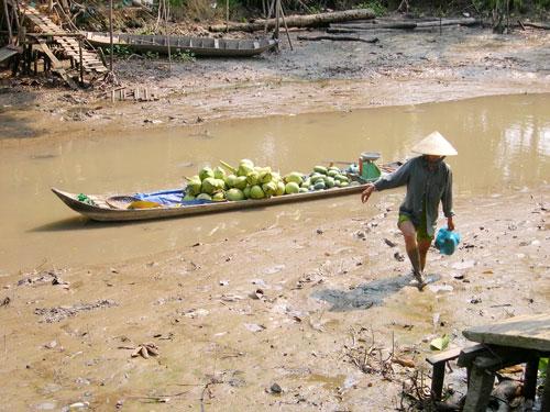 Một con kênh ở tỉnh Hậu Giang đã cạn nước - Ảnh: NGỌC TRINH