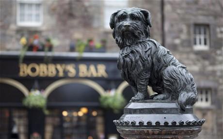 Tượng của chú chó Greyfriars Bobby đặt tại TP Edinburgh - Scotland. Ảnh: Rex Features