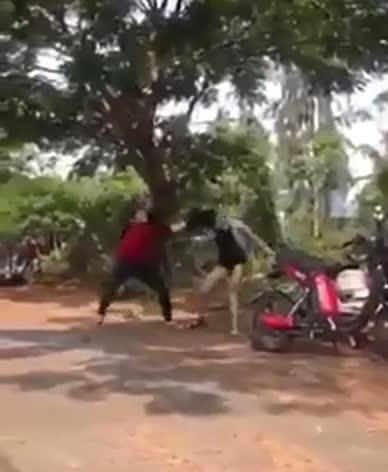 2 thiếu nữ lao vào đấm đá, túm tóc nhau Ảnh: Cắt từ clip