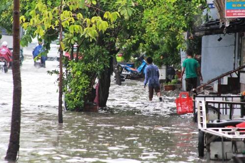 Ngập nặng nhất chắc chắn là con đường Nguyễn Hữu Cảnh, phường 22, quận Bình Thạnh. Chưa hết, đoạn dưới cầu vượt Nguyễn Hữu Cảnh nước đen ngòm bốc mùi hôi thối. Quan sát tại một số miệng cống thoát nước, có tình trạng nước thải từ trong cống trồi lên đục ngầu.