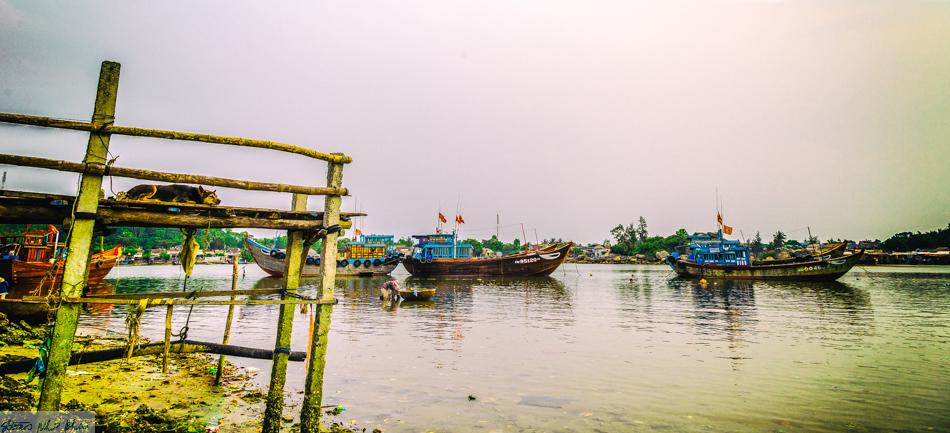 Cảnh tượng dọc sông rất yên bình
