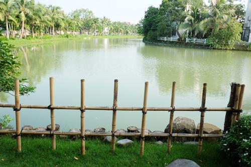 Khu vườn Nhật 120 m2 trong biệt thự ở Hà Nội