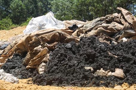Số chất thải được chở đến tập kết tại trang trại của ông Hòa - Ảnh: Dũng Sinh