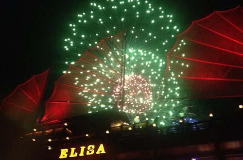 Chiêm ngưỡng pháo hoa trên tàu Elisa. Ảnh: Elisa