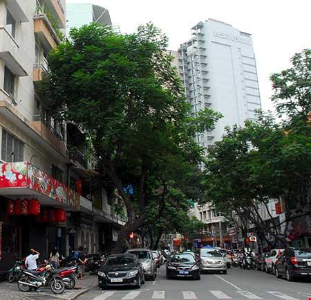 Nhiều chung cư, cao ốc ở trung tâm TP HCM không đủ chỗ giữ xe khiến các xe ô tô phải loanh quanh đậu ngoài đường. Ảnh: HTD