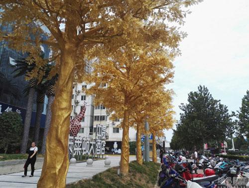 Dù có nhiều ý kiến trái chiều nhưng hàng cây vàng vẫn nhận được sự quan tâm của đông đảo du khách và nhanh chóng lan truyền trên các mạng xã hội.