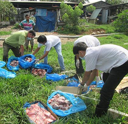 Lực lượng chức năng ở Cần Thơ tiêu hủy thực phẩm bị ôi thiu