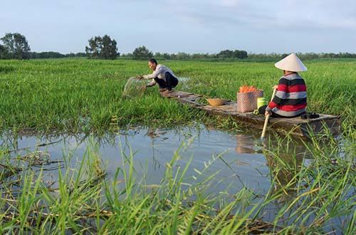 Dự án phát triển hệ sinh thái là một trong những tiêu chí tài trợ của IPP2 Ảnh: C.T.V