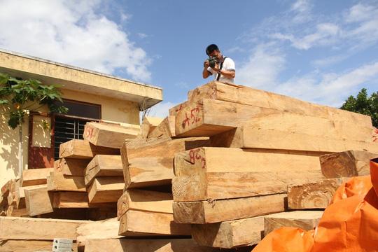Tổng cục Hải quan yêu cầu đình chỉ Chi cục trưởng Chi cục Hải quan Cửa khẩu Nam Giang vì liên quan đến vụ phát hiện gỗ pơ mu trong khuôn viên trụ sở