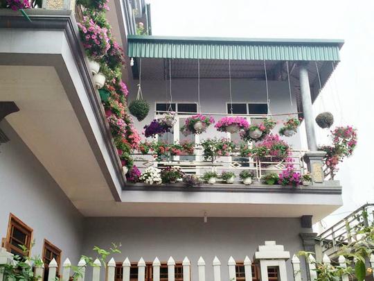 Từ khi còn trẻ, ông Phạm Duy Hiếu (Phù Yên, Sơn La) đã thích trồng cây xanh. Do cuộc sống bôn ba, bận công việc, ông không có nhiều thời gian dành cho tình yêu với cây, hoa.