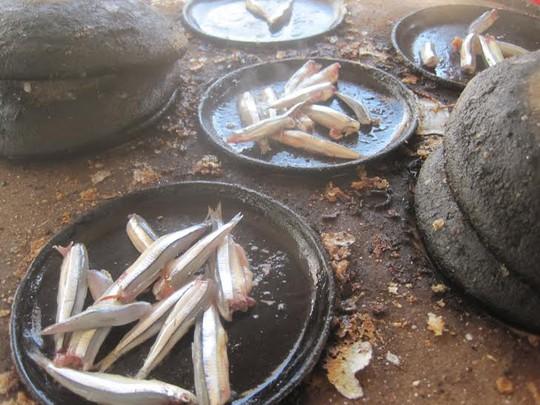 Cá cơm săn tươi rói chỉ có thể tìm thấy ở chợ quê vùng duyên hải