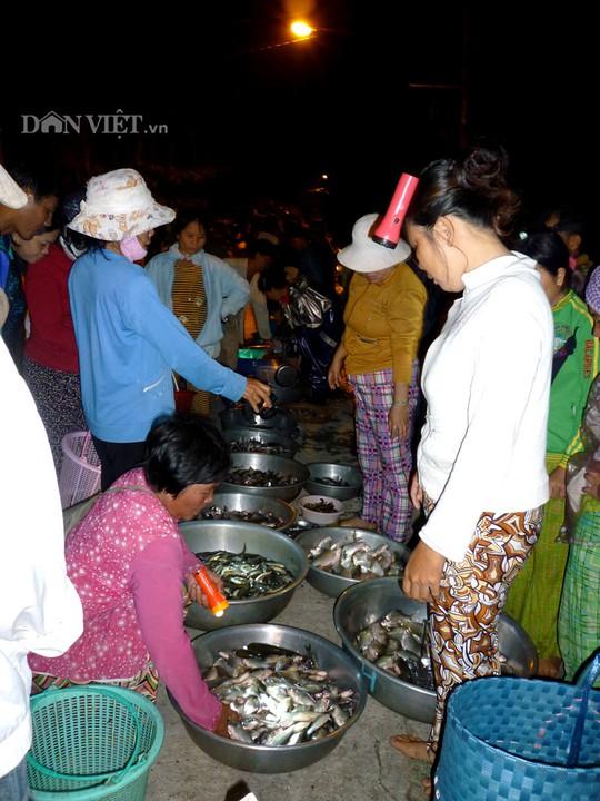 Cảnh mua bán cá tại chợ đêm Hòa Mỹ - Phụng Hiệp.