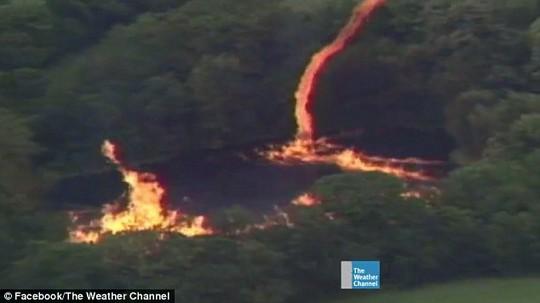 3 triệu lít rượu tràn ra hồ nước, bị sét đánh cháy