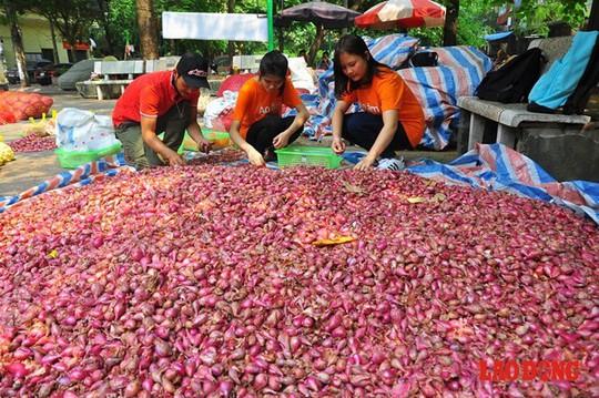 Anh Thắm cùng với những người bạn đã tổ chức một chương trình thiện nguyện phi thương mại có tên: Ủng hộ nông dân Lý Sơn - bảo vệ thương hiệu hành, tỏi - xóa bỏ lệ trừ bì. Hiện có 6 tấn tỏi và 2 tấn hành được anh thu mua của bà con nông dân với giá cao nhất so với thị trường hiện tại (50.000 đồng/kg tỏi, 30.000 đồng/kg hành) - không trừ bì, với chi phí mang từ đảo về Hà Nội mất 30.000 - 40.000 đồng/kg.
