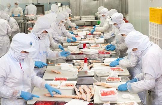 Chế độ đãi ngộ tốt của doanh nghiệp giúp công nhân Công ty CP Saigon Food yên tâm làm việc