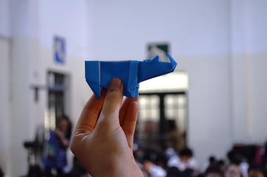 Các chú tê giác giấy đáng yêu của các em học sinh đã hoàn thành