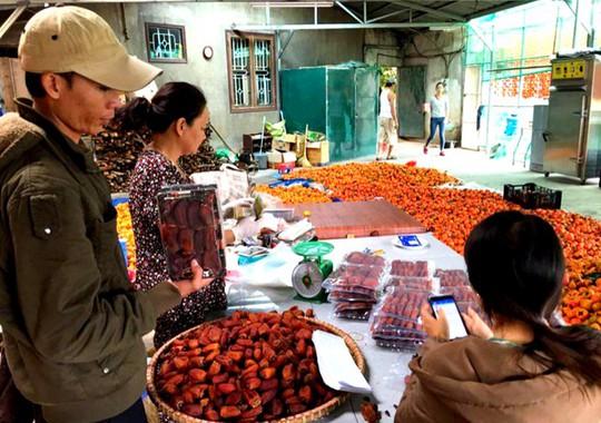Du khách đến cơ sở sấy hồng tham quan trực tiếp và mua sản phẩm.