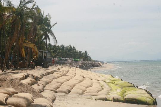 Bờ biển Cửa Đại (TP Hội An, tỉnh Quảng Nam) ngày càng bị xâm thực nghiêm trọng