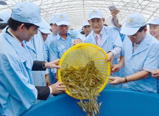 Thủy sản là ngành xuất khẩu thế mạnh của Việt Nam sẽ được hưởng lợi ngay sau khi FTA giữa Việt Nam và EAEU có hiệu lực Ảnh: Ngọc Trinh