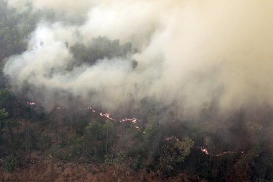 Khói dày đặc bốc lên do đám cháy ở tỉnh Nam Sumatra-Indonesia. Ảnh: REUTERS