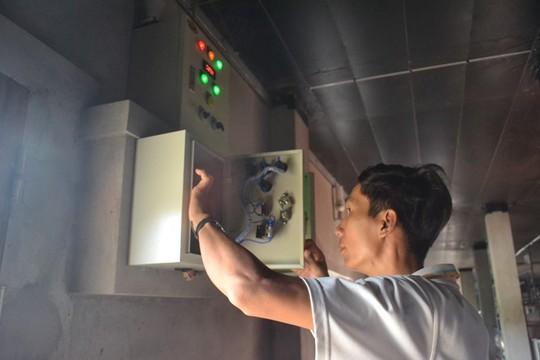 Heo nái của Mỹ được anh Tuấn nuôi bằng hệ thống máy lạnh khép kín. Ảnh: Nhiệt Băng