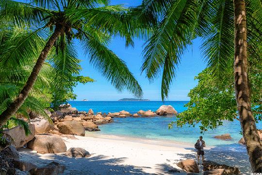 Bãi biển Anse Georgette. Ảnh: ISTOCK