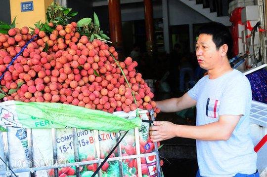 Một thương lái họ Đường (Hồ Nam, Trung Quốc) đang kiểm tra chất lượng vải trước khi mua.