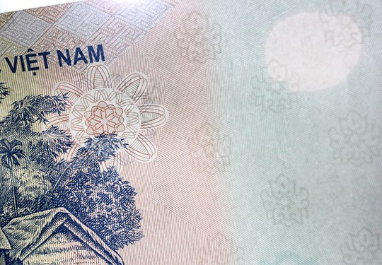 Hoa văn chìm chống giả trên tờ tiền. Ảnh: Zen Nguyễn