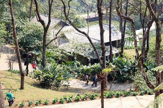 Xây Resort trái phép ở vườn Quốc gia Ba Vì: Do quá nể nang(?!)