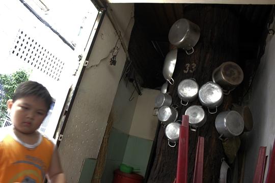 Hơn 50 năm qua, gần 20 người trong gia đình bà Nguyễn Thị Ba (70 tuổi) sống chen chúc trong căn nhà khoảng 80m2. Cây cổ thụ này mọc từ khi bà Ba ra đời, nay được tận dụng để làm chỗ để xoong, nồi và bếp lò nấu nướng.