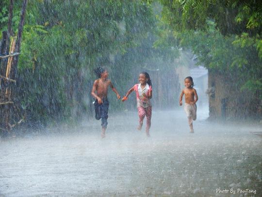 """Bức ảnh """"Cơn mưa rào"""" của nhiếp ảnh gia Tăng A Pẩu bị nhiều đơn vị, cá nhân xâm phạm bản quyền"""