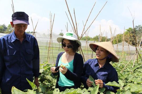 Để có nguồn hàng cho cửa hiệu, từ năm 2012, Thảo buộc phải làm trang trại ở Long Thành, Đồng Nai trên diện tích 1,8 ha. Ảnh: TLHB