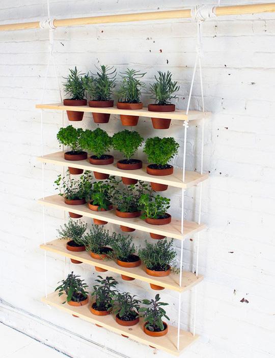 Chỉ với vài thao tác đơn giản bạn đã có thể sắm cho mình một góc vườn nhỏ đẹp mắt thế này.