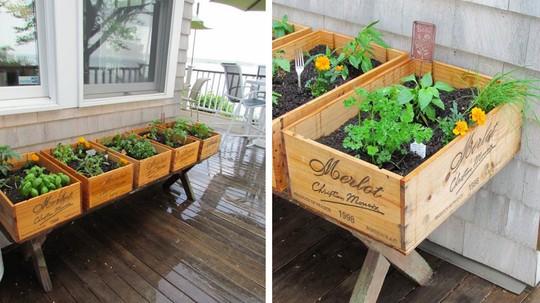 Bởi bạn sẽ có đủ không gian để trồng bất cứ loại rau củ nào, từ những loại cho lá hay là lấy củ.