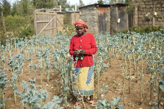 Bà Wangechi N., 60 tuổi, bị những người đàn ông lạ mặt cưỡng hiếp vào tháng 12-2007. Ảnh: HRW