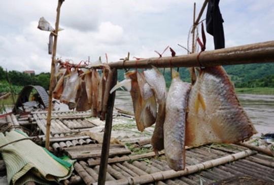 Người dân tiếc công tiếc của đã làm thịt cá phơi để dùng hoặc cho người thân về dùng