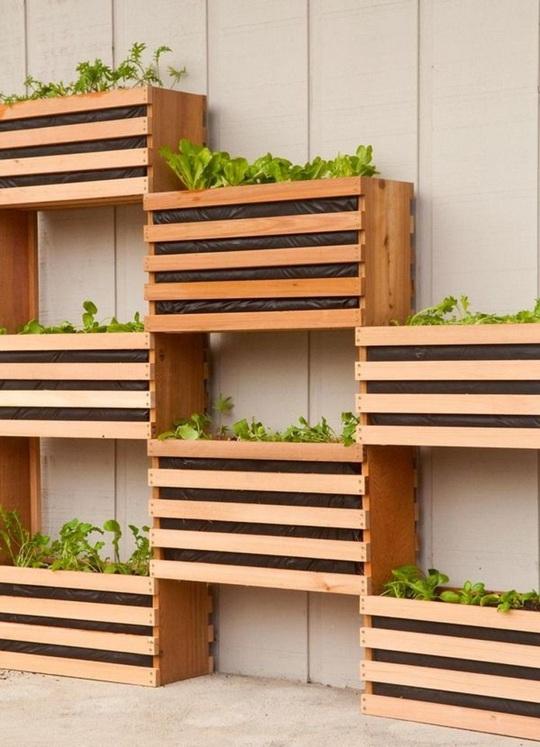 Việc thiết kế thành từng khay đan xen có bạn tiết kiệm được diện tích cũng như dành đủ không gian cho các loại rau củ phát triển.
