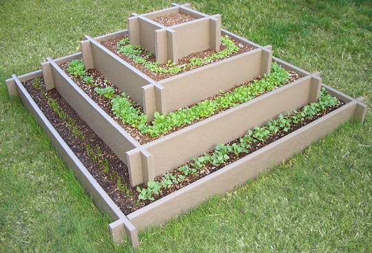 Kiểu tạo hình theo hình kim tự tháp đơn giản, dễ làm và đặc biệt cũng rất dễ trong quá trình gieo trông, chăm sóc hay thu hoạch.