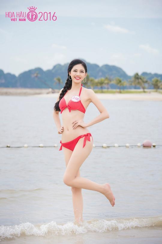 Ứng viên hoa hậu Ngô Thanh Thanh Tú đang là thí sinh sáng giá của ngôi vị Hoa hậu Việt Nam năm nay